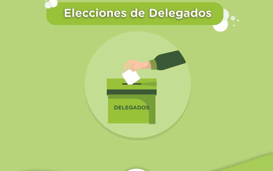 Elecciónes de Delegados
